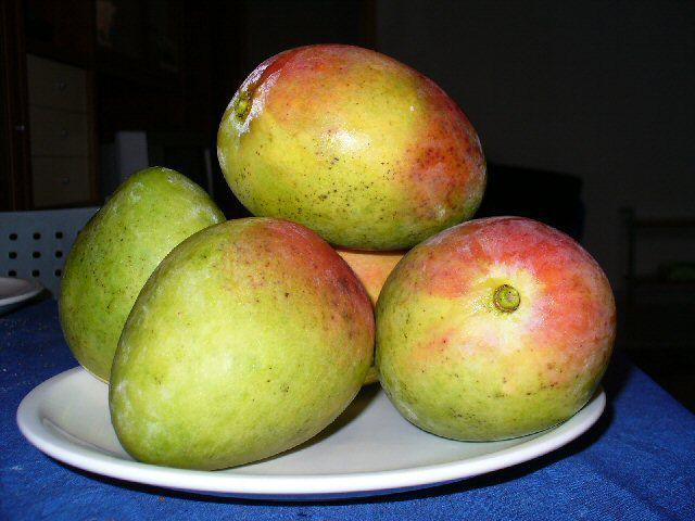 Sablé à la mangue